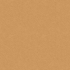 0551 (BS), персик