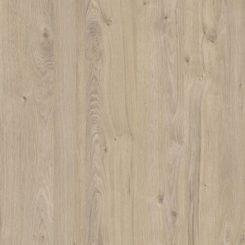 K081 (PW), дуб приморский сатиновый