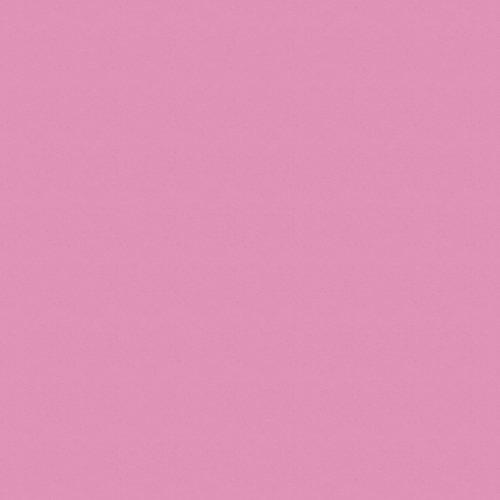 8534 (BS), роза