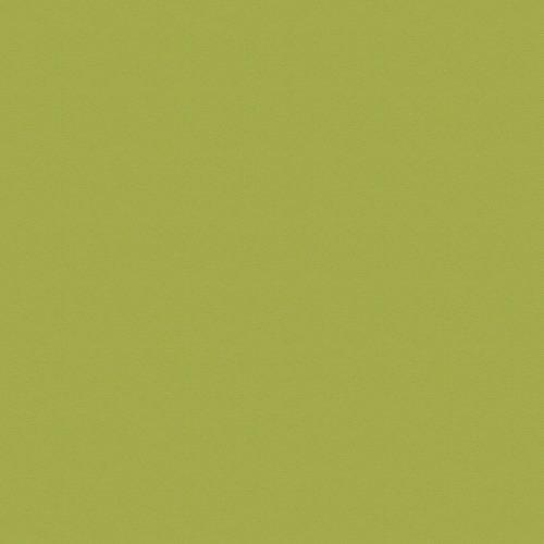 8996 8996 (BS), зеленый океан/оливковый