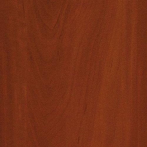 8_1972-PR-яблоня-локарно-темная 1972 (PR), яблоня локарно тёмная